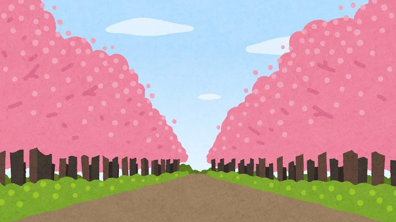 blog sakura